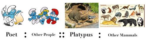 platypus poet