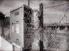 fuck the fuckin' fuckers (mugley) Tags: blackandwhite bw 120 film fence mediumformat graffiti dof kodak trix grain vine australia victoria 400tx chainlink epson parkingmeter polarizer 6x45 vignetting vignette mamiya645 urbanlandscape redfilter swearing vulgarity pottymouth westmelbourne obscenity polariser urbanfragment kodaktrix400 25a v700 mamiya645protl m645 35mmf35sekorn vehiclecontroldroid fuckallthosefuckers whopisssayaoff railwaypl