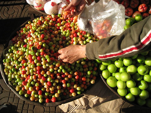 Choosing Vietnamese cherries