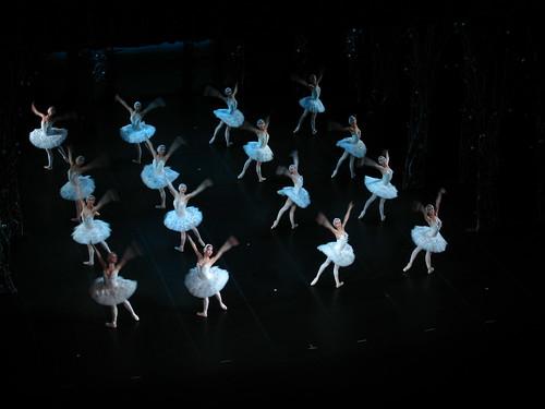 8322 - St Petersburg - Alexandrinsky Theater - Swan Lake