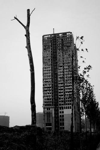 Hefei street by you.