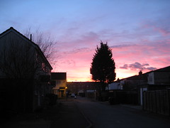 Courtney mews sunset