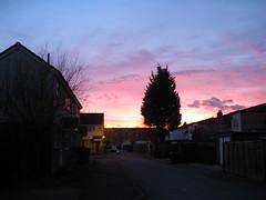 Courtney mews sunset
