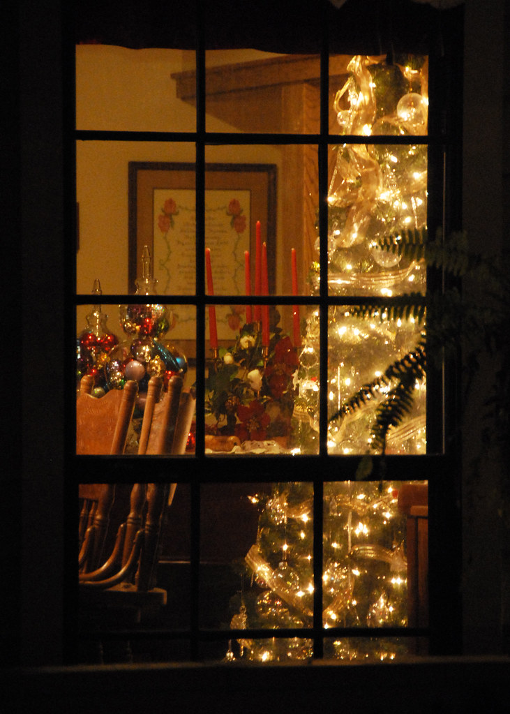 One of our trees through the window