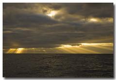 Sunrise sunrise... (PedroMadruga) Tags: ocean sea wild sunrise wildlife pico d200 azores açores openocean pedromadruga southofpico suldopico