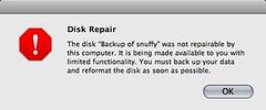 Disk Repair Error
