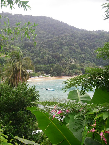 Man o' War Bay