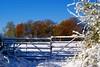 High  Chilterns (algo) Tags: blue autumn england sun white snow photography topf50 topv333 bravo chilterns topv999 algo 50f brillianteyejewel