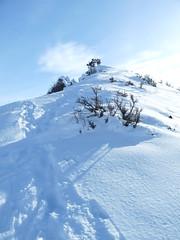 Steepish ridge to the summit.