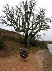 Extremadura 001