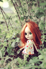 Watcha Doing in the Bushes, Silly? - 177/365 ADAD 2011