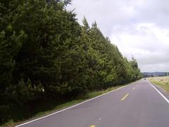 Carretera Tquerres - Ipiales (AlehoPzart) Tags: road travel ruta colombia carretera route estrada altiplano rodovia ipiales nario aleho tuquerres