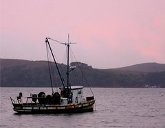 Sunset at Point Reyes (Kathy~) Tags: california sunset water boat fc ptreyes photofaceoffwinner pfosilver herowinner