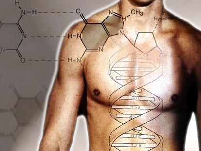 apg_genes_070613_ms