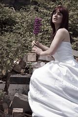 IMG_0491 (LouiseKnight) Tags: trash dress surrey ttd