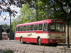 'Leyland Day' Crich, July '08. (Renown) Tags: buses derbyshire leopard western alexander coaches sbg leyland crich tramwaymuseum westernsmt ytype westernscottish bedfordca rsd732j tramwayvillage leylandevent