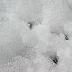 foam thumbnail