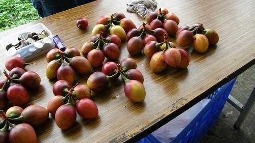 80.奮起湖老街賣的樹蕃茄