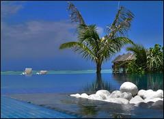 Infinity pool (Nespyxel) Tags: travel sea water stones blu piscina palm pointofview swimmingpool maldives sassi palma viaggio soe infinitypool atoll maldive olhuveli atollo supershot challengeyouwinner mywinners abigfave ysplix overtheexcellence goldstaraward nespyxel rubyphotographer stefanoscarselli pleasedontusethisimageonwebsites blogsorothermediawithoutmyexplicitpermissionallrightsreserved