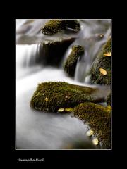 Its a Close Up! (Samantha Nicol Art Photography) Tags: longexposure water up speed garden scotland moss nikon rocks close slow peebles shutter samantha nicol sammikins1976 samanthanicolartphotography