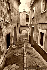 Arco del Castillo (Jos Rafael Navarro) Tags: espaa sepia calle spain alicante arco castillo hdr petrer petrel