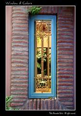 Africa Window & colors (Alex_Berta) Tags: africa window colors gardens oracle finestra ventanas marocco marrakech majorelle 2008 colori luce giardini morrocco