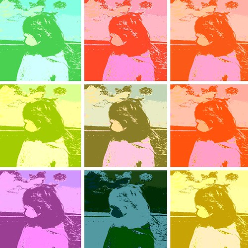 Grainne Warholized