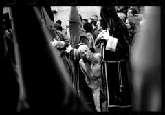 Semana Santa VALLADOLID (carlos gonzlez ximnez) Tags: santa old rural photography ancient photographie magic religion culture traditions folklore antigua article ritual tradition anthropologie popular rite semana myth rituel anthropology vieux procesion pagan ancestral iberia reportage antropology magie tradicion ethnography populaire iberian rito cristianismo antropologia folclore blancetnoir ethnographic cofrades etnografia mythe ibrique ethnographique paen ethnographie anthropologique ximenez goldenbranch anthropologic ancientfolklore fotografiaetnograficaximenez ritetradition whitetargetandblack unebranchedore vieuxfolkloreancestral photographieethnographique photographieanthropologique culturaprimitiva fotografiaetnograficamito