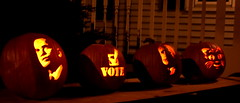 Vote! (lehcar1477) Tags: autumn light party fall halloween america john pumpkin democracy office election kitten message jackolantern united president country kitty running right statement leader states choice reminder vote republican democrat obama voting mccain candidates ballot elect nov4 palin barrack decide biden november4th