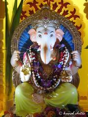 Ganpati Bappa Moryya.... (Learning to Click..) Tags: festival blessings eyes god lord divine ganesh elephantgod bappa almighty ganpati lordganesh siddhivinayak festivalsofindia ganpatibappa moryya