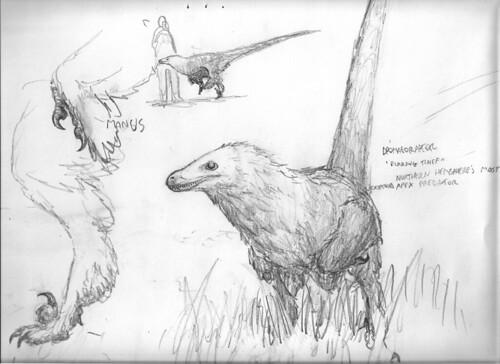 dromaeoraptor