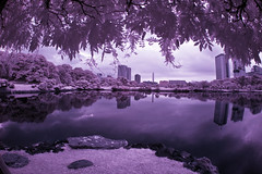 Hama Rikyu View (aeschylus18917) Tags: infrared japan tokyo chuoku hamarikyu hamarikyukoen hamarikyugarden 浜離宮恩賜庭園 hamarikyūonshiteien shimbashi japanesegarden hamarikkyu pond lake reflection skyscrapers surreal danielruyle danruyle druyle aeschylus18917 赤外線 ir landscape scenery sky tree ダニエルルール ダニエル ルール park 公園 garden 庭 grass trees nikon d70 hamarikyugardens reflections pxt 1870mm