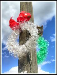 Natal 2008 (Mauricio Portelinha) Tags: christmas natal reciclagem decorao enfeite ivaipor