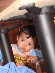 Benji hiding