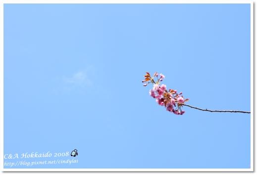Hokkaido_2319