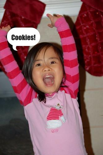 Christmas cookies (24)