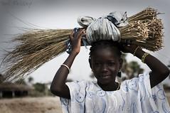(Paul Fessey) Tags: poverty africa travel people holiday black beach girl work paul photography 50mm nikon african poor gambia elegant 18 d300 fessey omglawl