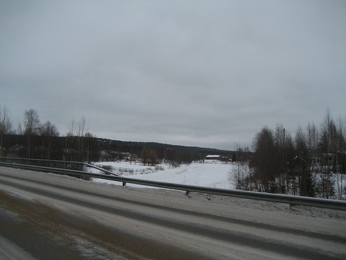 landscape from walk in Rovaniemi, Finland