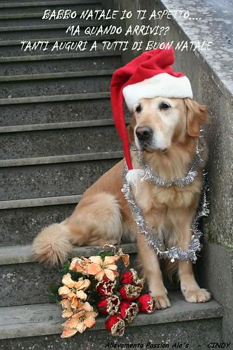 Cindy-auguri Natale da te.