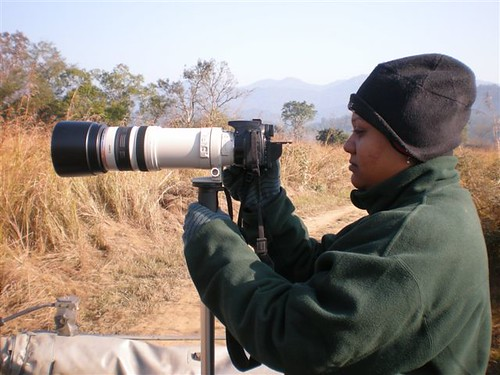 Shooting the Shrike