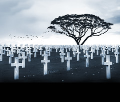 Memorial Day: A Hymn To Our Fallen Heroes. (Tomasito.!) Tags: panorama woman man art halloween beautiful cemetery birds america death nikon cross philippines religion surreal chapel manila heroes paranormal magical singletree memorialday supernatural d90 federalholiday vertorama mygearandme mygearandmepremium mygearandmebronze mygearandmesilver mygearandmegold mygearandmeplatinum