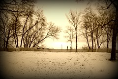 New Views (mr1derful745) Tags: trees lake snow grass digital yard eos rebel front fpc blueribbonwinner xti platinumphoto showmeyourqualitypixels