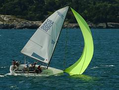 Jibe ho! (cruadinx) Tags: sailboat boat rhodeisland sail spinnaker jibe newportri melges melges24 narragansettbay anawesomeshot impressedbeauty pegasus505