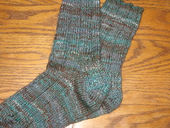 minnesota socks