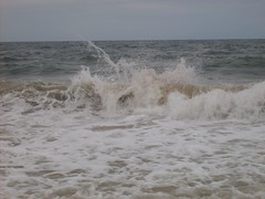 There might be a boogie boarder in that wave (Tappel) Tags: obx 08