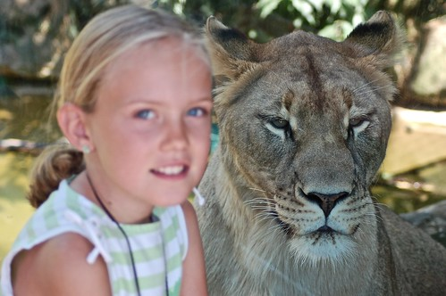 Livi and the Lioness