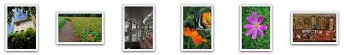 Nikon D90 sample photos from Nikon-Cafe.jp