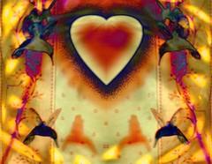 A Taste of Orange (griffithjune49) Tags: light orange heart mirrored sensational hummingbirds specialeffects