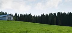 Green sloped field (Jonne Naarala) Tags: finland landscape canonef2470mmf28lusm lightroom ibeauty kumpunen nearbynature