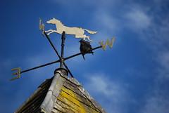 Wind rider with bird (zsoa's simple life album) Tags: ireland roof sky house bird castle animal nikon object cork blarney windrider d40x zsoa